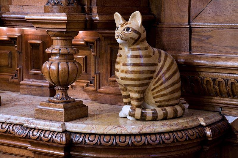 cats09 10 мест, в которых обожают кошек