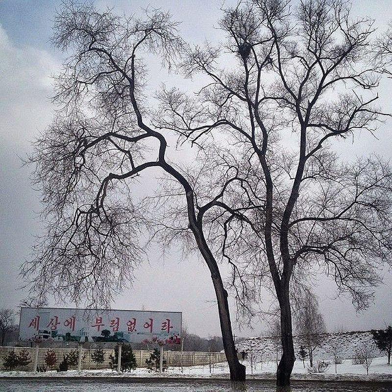 guttenfelder13 Instagram фотографом года по версии TIME стал автор блога о Северной Корее