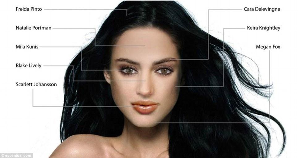 idealface02 Как воспринимают женскую красоту мужчины и женщины