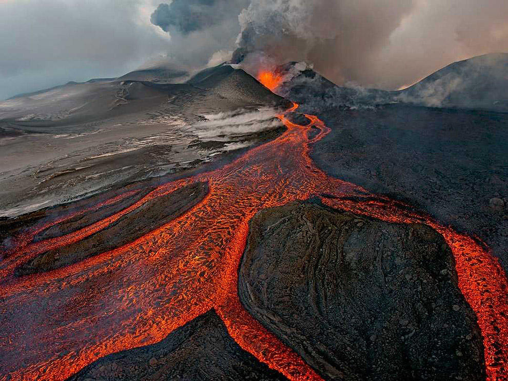 scientific02 Самые невероятные научные фотографии уходящего года