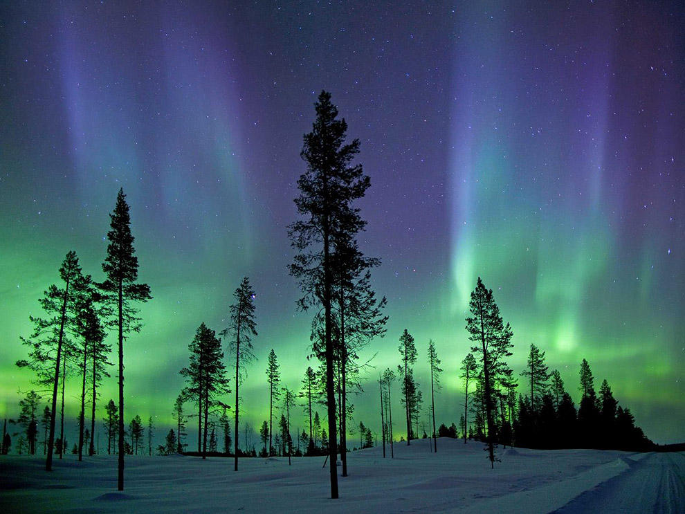 scientific05 Самые невероятные научные фотографии уходящего года