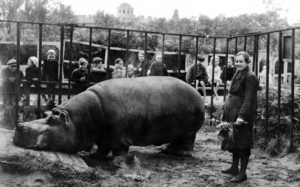 spbzoo09 Как ленинградский зоопарк пережил блокаду
