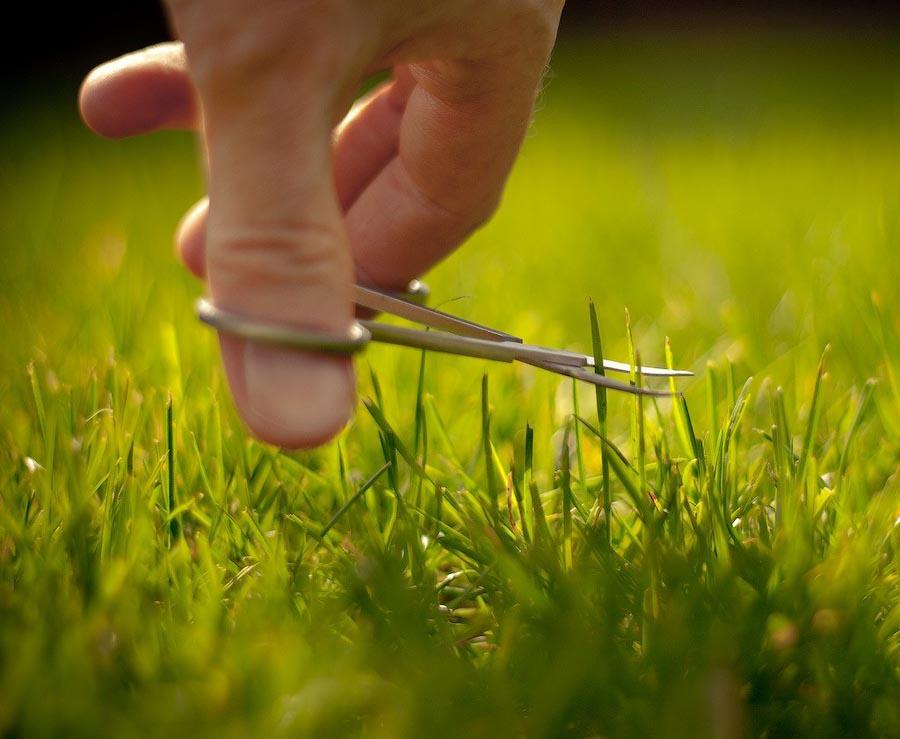 uksus01 20 способов использовать уксус в хозяйстве