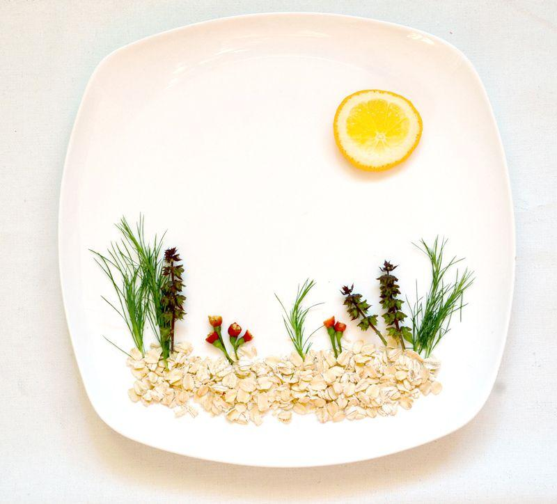 HongYi01 Маленькое чудо в тарелке