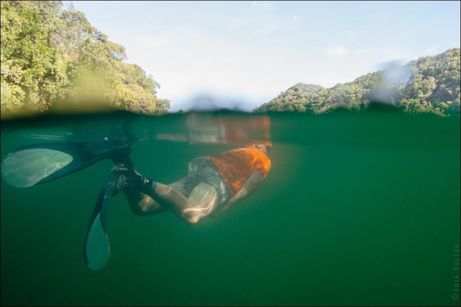 JellyfishLake16 30 фотографий озера, которое переполнено медузами