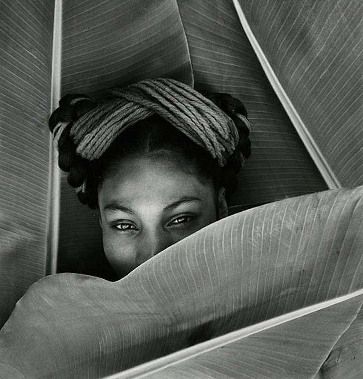 fritzhenle01 Удивительные снимки прекрасных женщин от Фрица Хенле