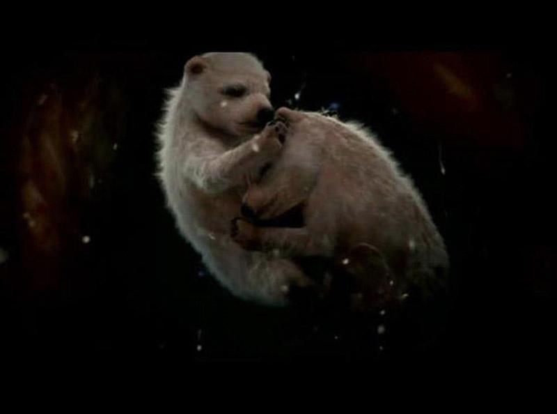 inutero04 Как выглядят животные в утробе матери