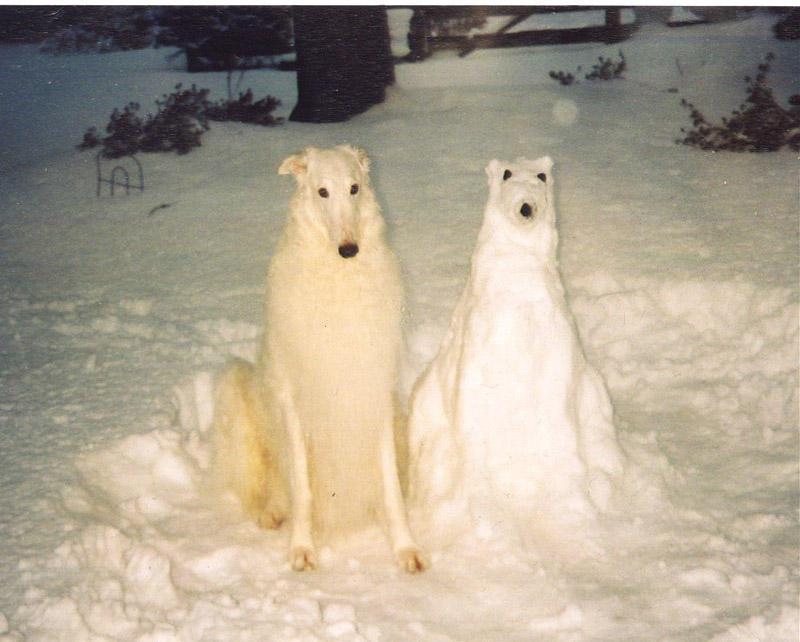 이러한 다른 눈사람 snowmen21