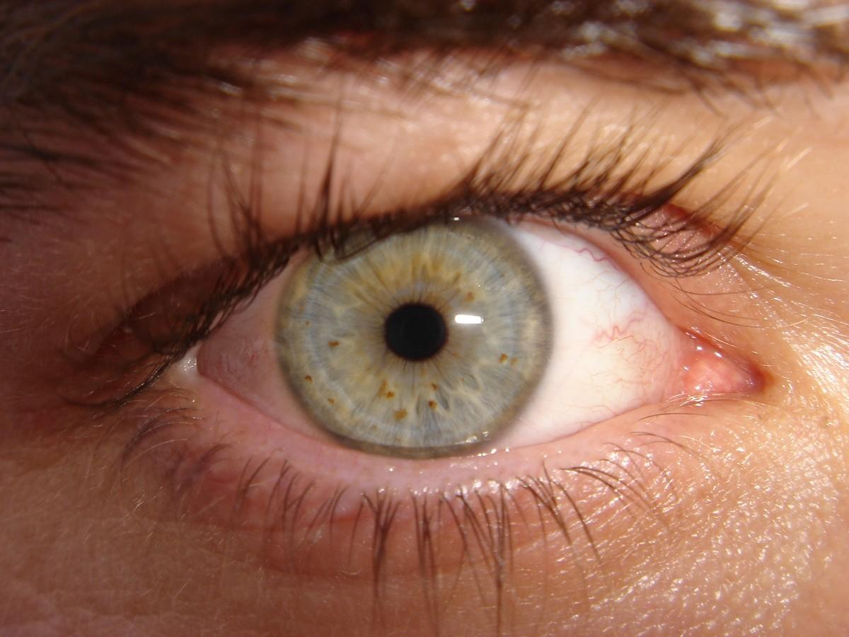 4Eyes03 10 советов о том, как уберечь зрение