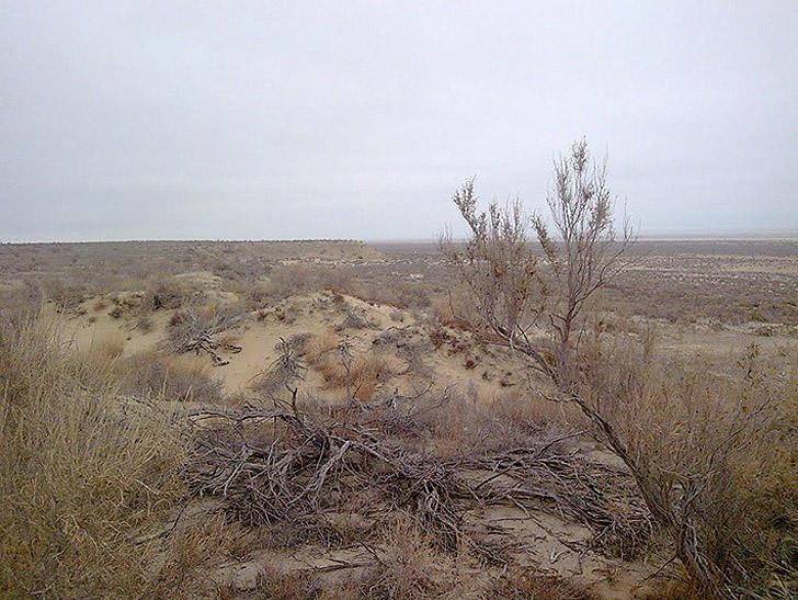 Aralsk7 03 Аральск 7 — закрытый город призрак, где испытывали биологическое оружие