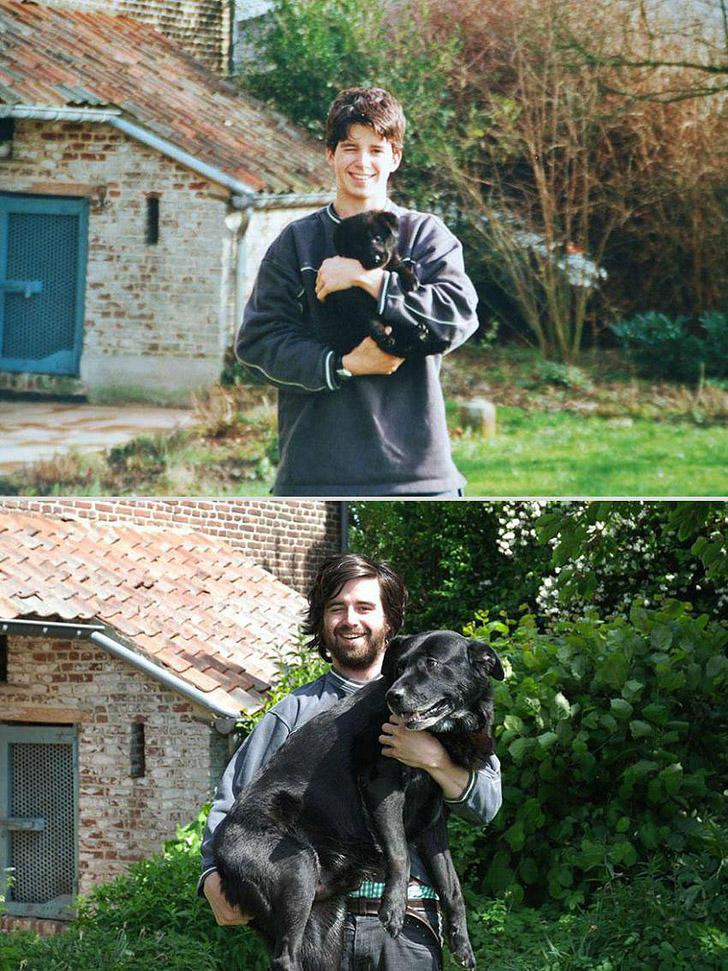 GrowingUp02 Наши любимые животные: фото до и после взросления