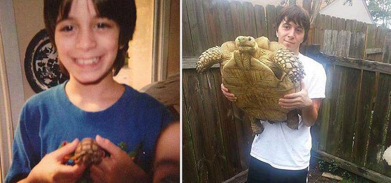 GrowingUp05 Наши любимые животные: фото до и после взросления