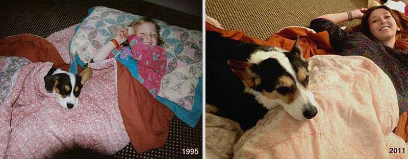GrowingUp07 Наши любимые животные: фото до и после взросления