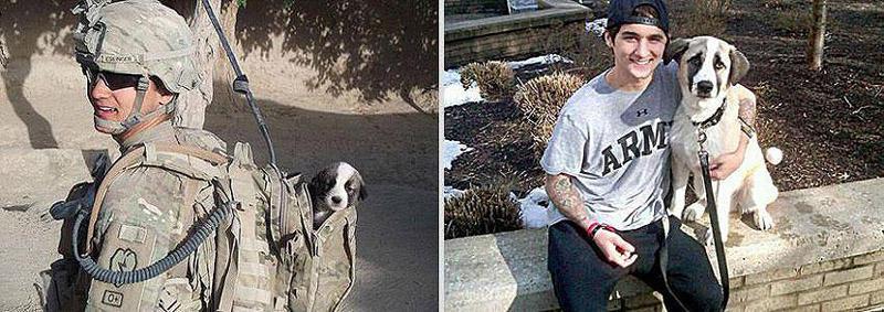 GrowingUp09 Наши любимые животные: фото до и после взросления