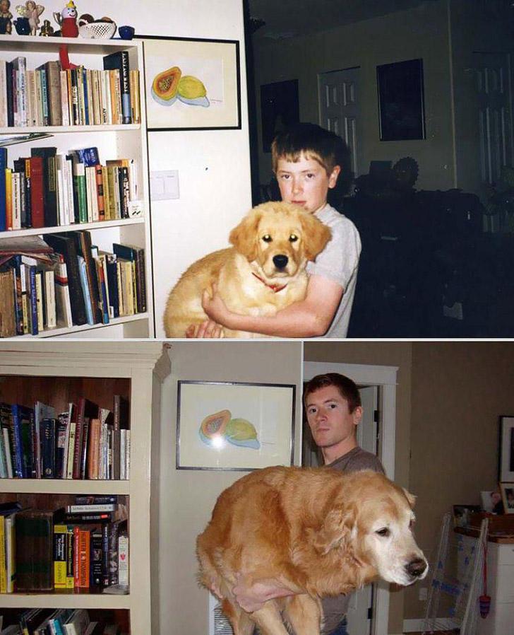 GrowingUp22 Наши любимые животные: фото до и после взросления