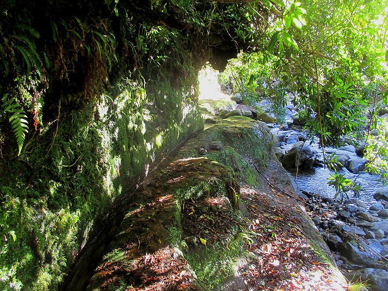 Madeirawalk21 Мадейра. Прогулка из Сантаны в Фуншал