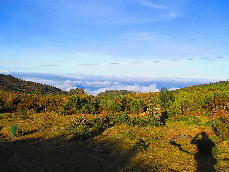 Madeirawalk25 Мадейра. Прогулка из Сантаны в Фуншал