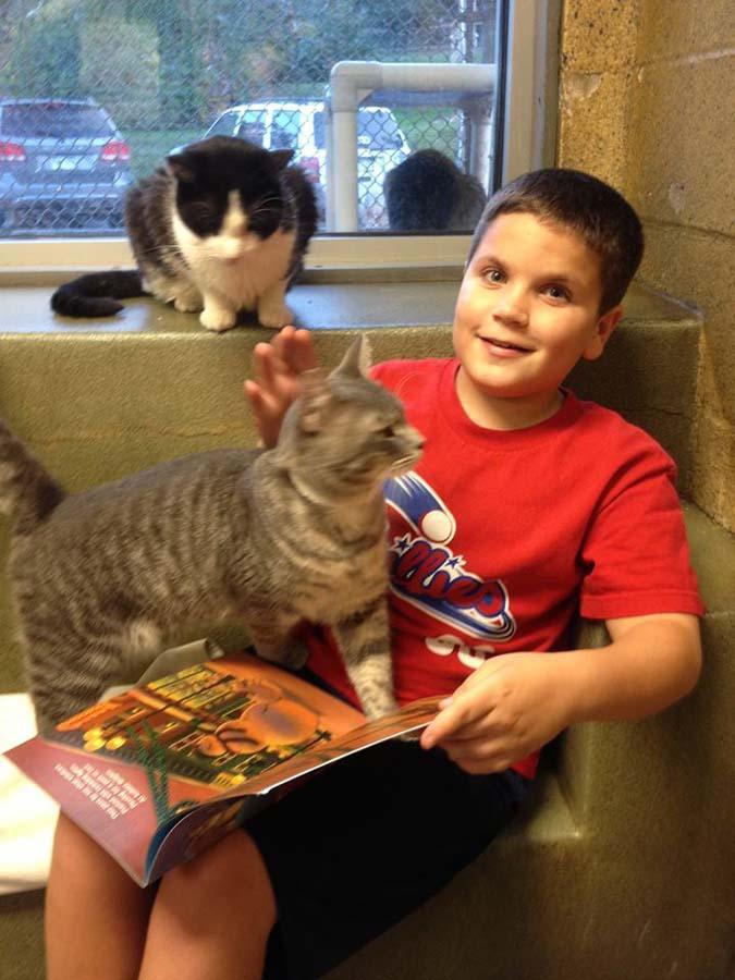 bookbuddies21 Дети учатся читать, а коты им помогают