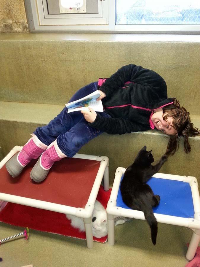 bookbuddies61 Дети учатся читать, а коты им помогают