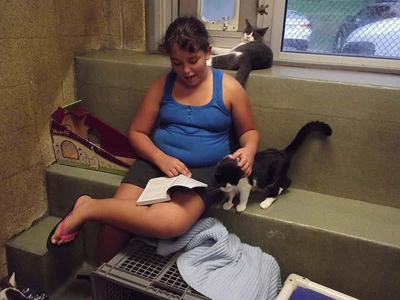 bookbuddies71 Дети учатся читать, а коты им помогают