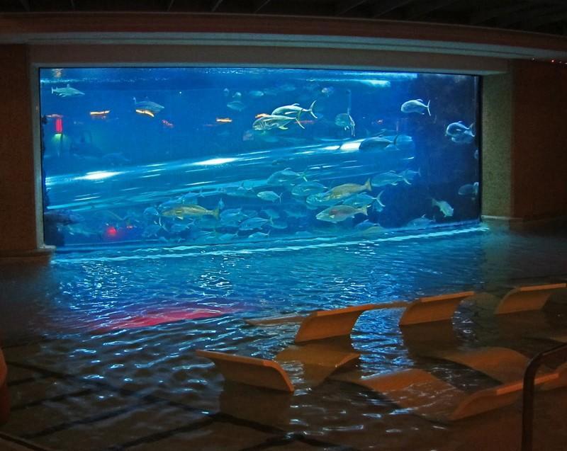 pools06 10 самых невероятных бассейнов в отелях мира