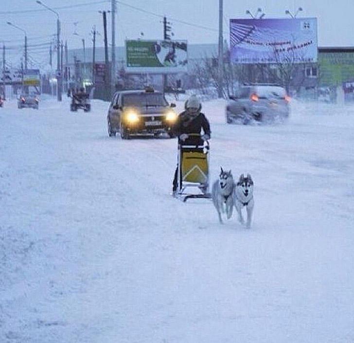 snowyRostov06 Ростов на Дону: четвертый день в снежном плену