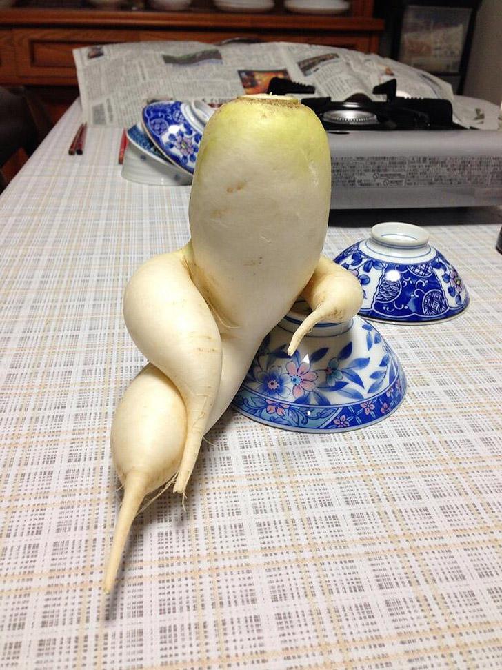 FunnyShaped01 Вальяжная редька и другие фрукты овощи, забывшие, что они растения