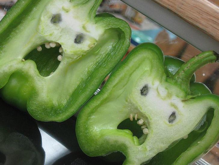 FunnyShaped12 Вальяжная редька и другие фрукты овощи, забывшие, что они растения