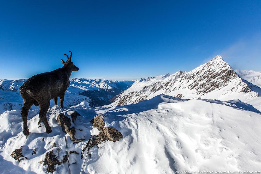 obergurgl09 Что пьют горные козлы?