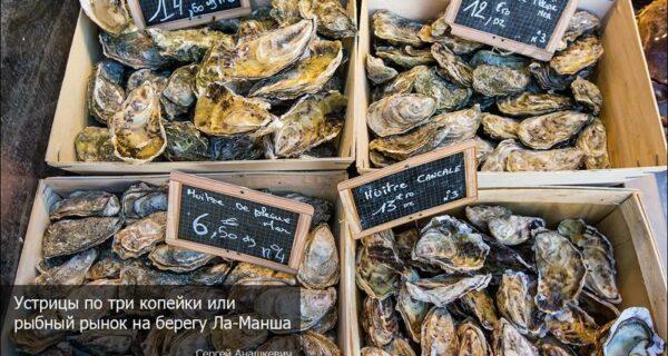 Устрицы по три копейки или рыбный рынок на берегу Ла-Манша