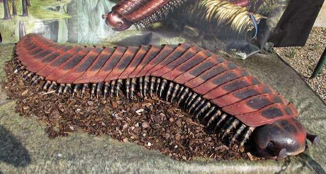 prehistoric14 Невероятные монстры прошлого, обитавшие на Земле
