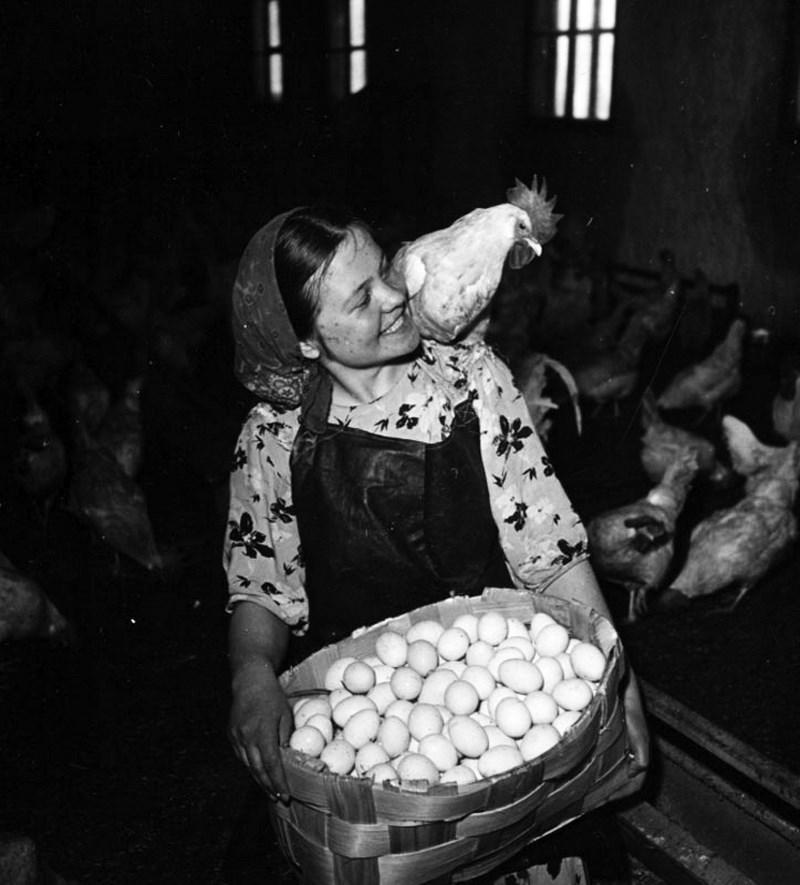 sovietgeniuses47 64 гениальных советских фотографии от ярчайших фотомастеров