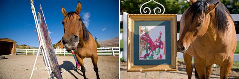Рисующая лошадь стала сенсацией в интернете. Лошадь по кличке Чолла не простое домашнее животное - она художник. Её картины даже выставляются в Италии.