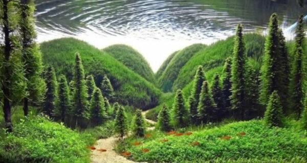 Искусство аквариумистики — удивительные подводные пейзажи