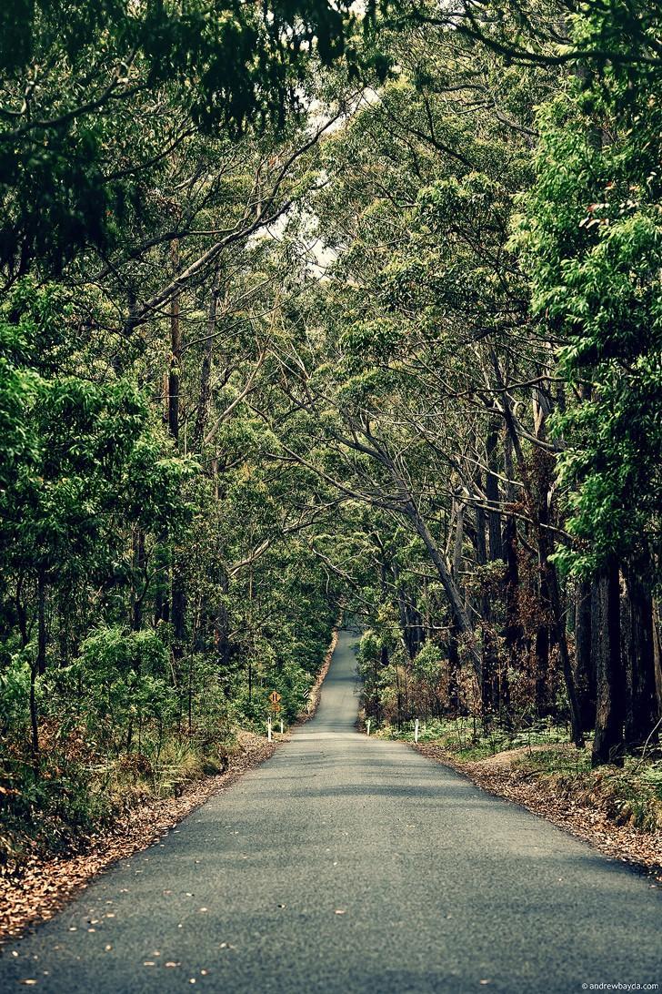 Australia13 Большое путешествие по Австралии
