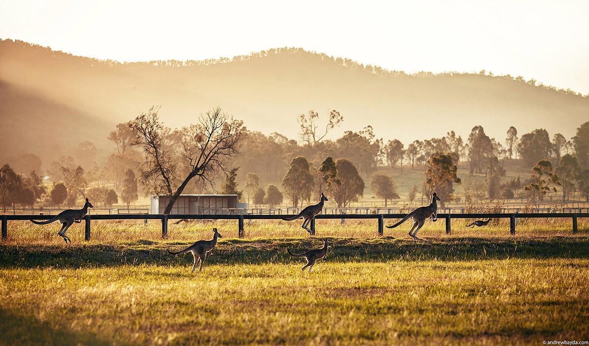 Australia23 Большое путешествие по Австралии