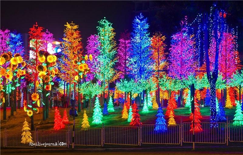 I City00 I City: светящийся сад в Малайзии