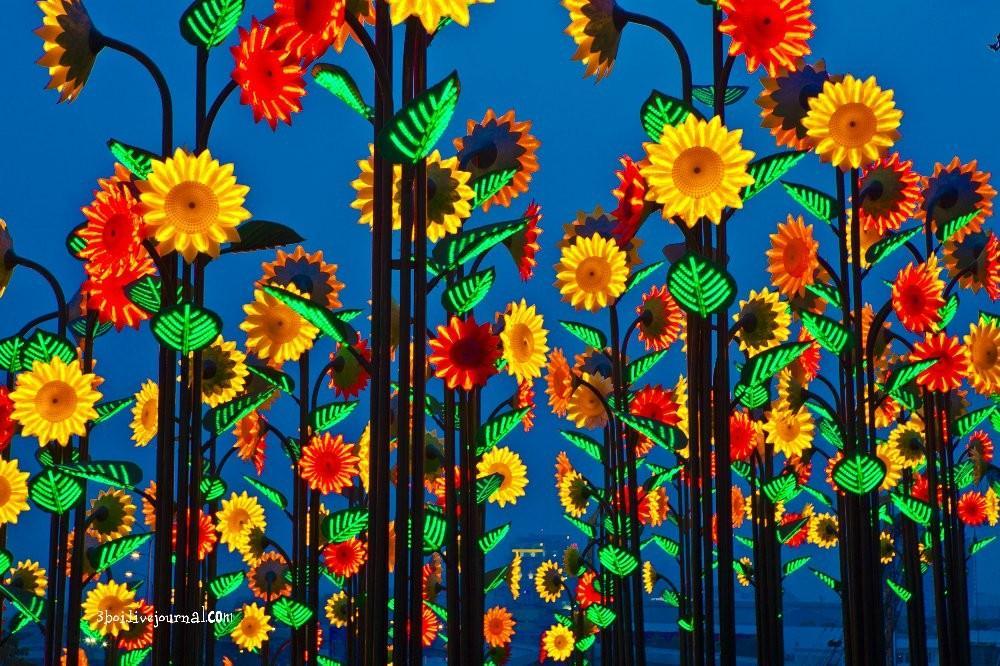 I City06 I City: светящийся сад в Малайзии