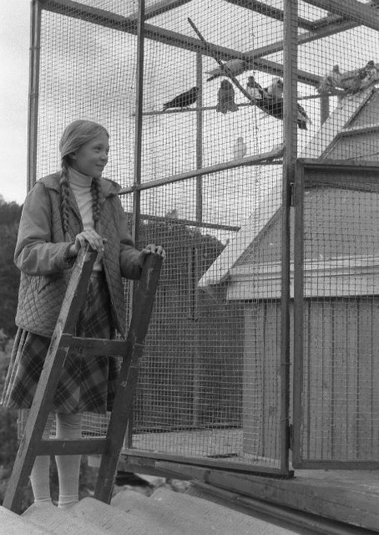 loveandpigeons44 «Любовь и голуби»: детали, факты и редкие кадры из фильма