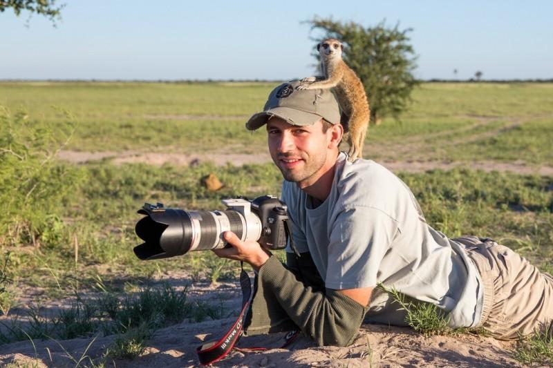 meerkats06 800x533 Дружба между сурикатами и фотографом