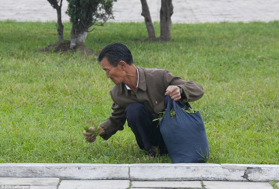 insideNorthKorea19 Запрещенные фотографии — Северная Корея, снятая скрытой камерой