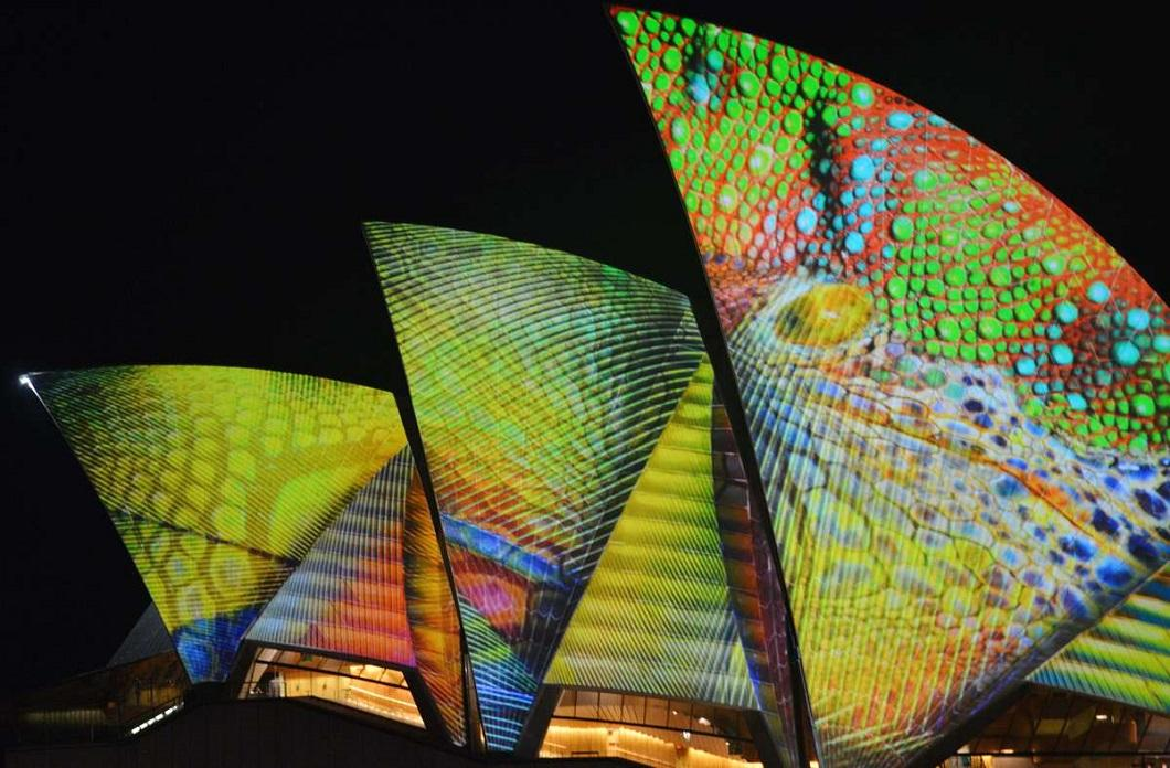 svetovoe shou 9 Фестиваль света в Сиднее