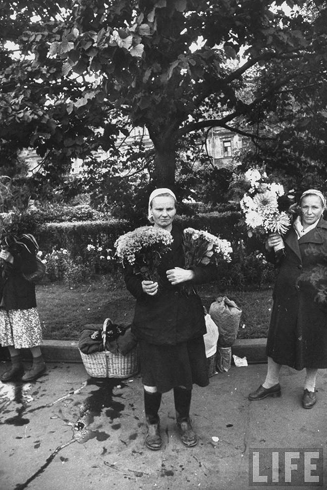 ByLarsen22 Москвички в 1956 году