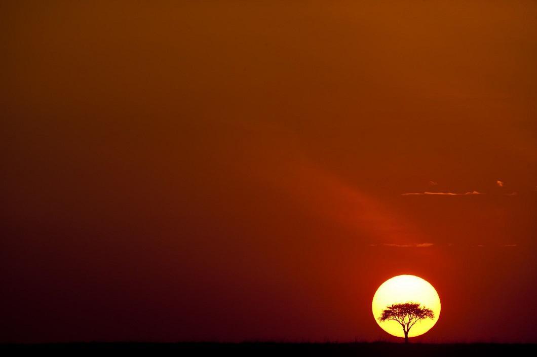 http://bigpicture.ru/wp-content/uploads/2014/06/afrikanskie-zakaty-1.jpg