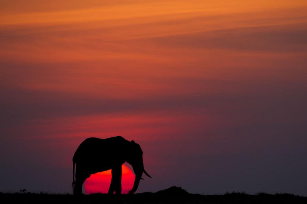 http://bigpicture.ru/wp-content/uploads/2014/06/afrikanskie-zakaty-10.jpg