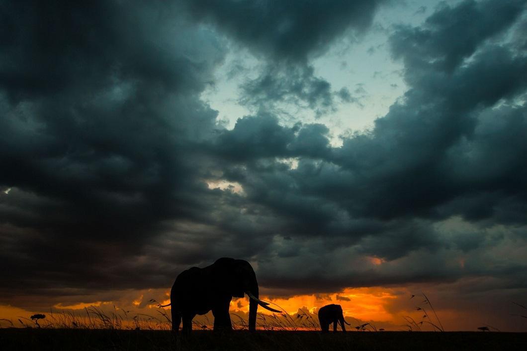http://bigpicture.ru/wp-content/uploads/2014/06/afrikanskie-zakaty-7.jpg