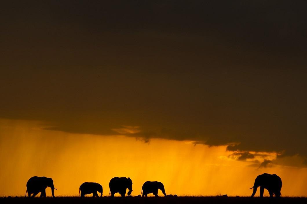 http://bigpicture.ru/wp-content/uploads/2014/06/afrikanskie-zakaty-8.jpg