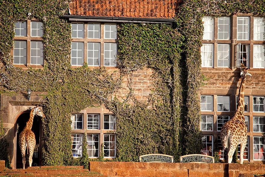 Стръмни amazinghotels42 хотели, които искат да бъдат точно сега