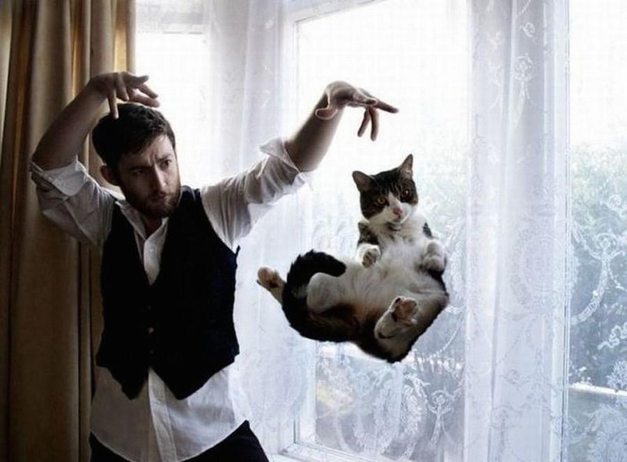 lolcats01 100 лучших фотографий кошек всех времен и народов