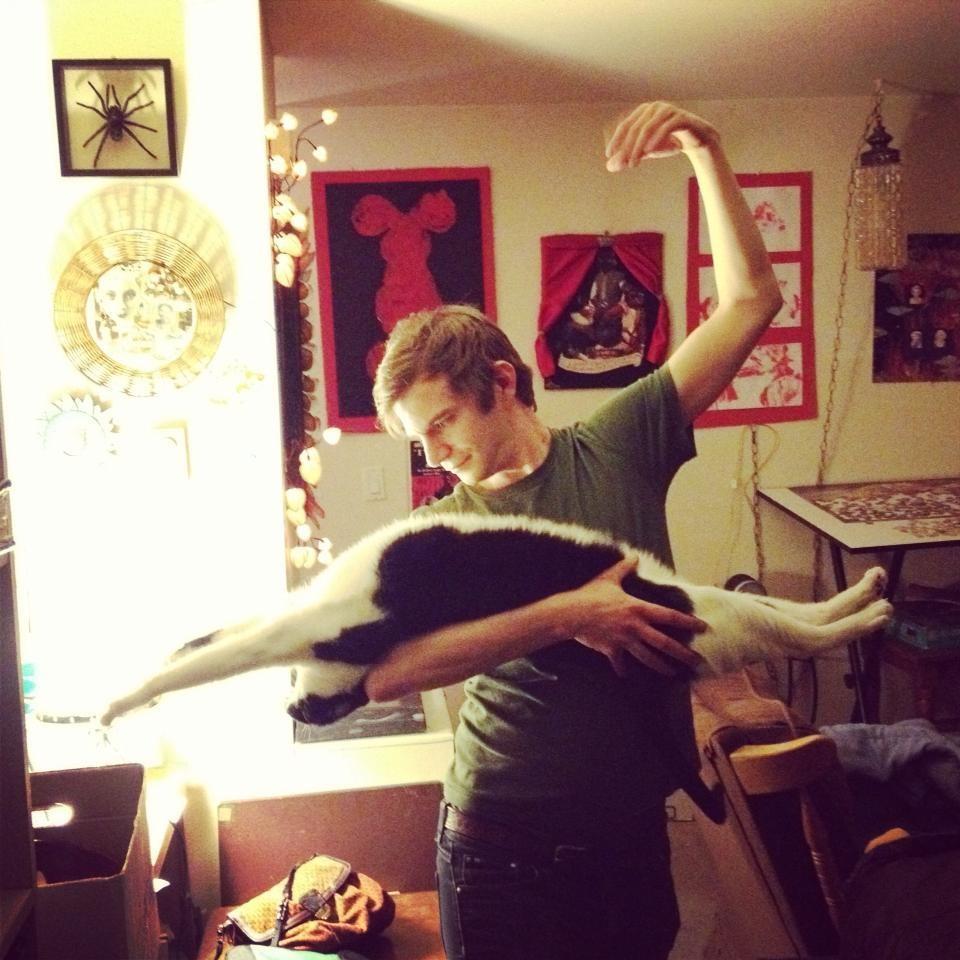 lolcats44 100 лучших фотографий кошек всех времен и народов